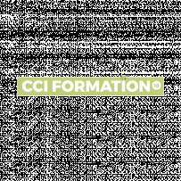 CCI Formation18